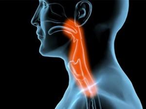 Biofeedback y problemas de deglución en pacientes tras ictus o lesión cerebral